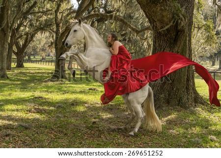 Girl riding a white azteca mare horse - stock photo