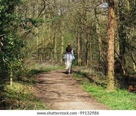 Girl riding a white horse on a woodland track - stock photo