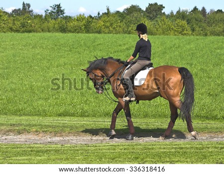 Girl riding on a horse in a green landscape - stock photo