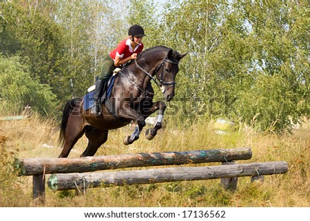 Girl riding on horse and jumping over hurdle - stock photo