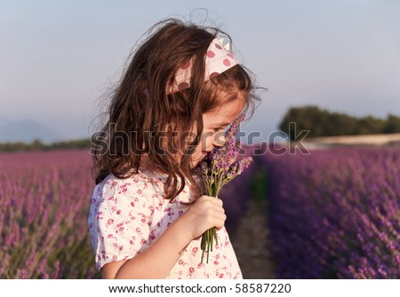 Girl sniffing lavender flowers in a lavender field - stock photo