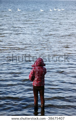 girl watching swans swimming at sea - stock photo