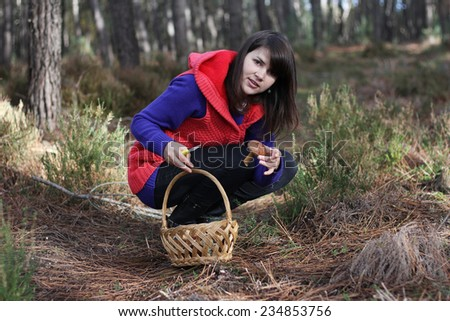 girl with basket in the forest - stock photo