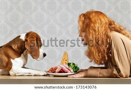 girl with cute beagle and  snack on  white plate - stock photo