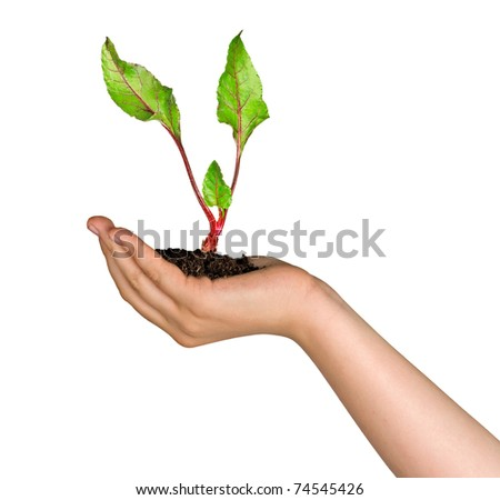 girl with sprout of beet in hand - stock photo