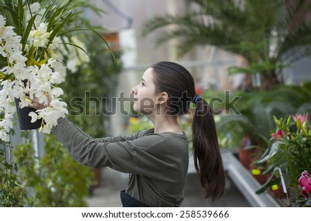 Girl working in a garden conservatory - stock photo