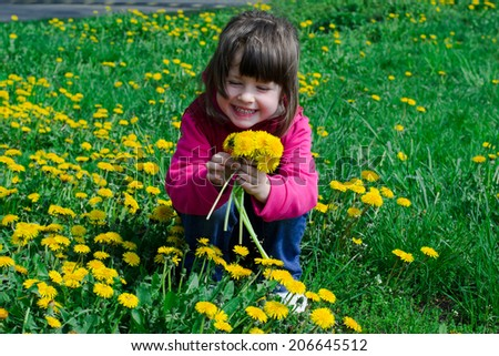 girl, 3 years old, sitting in the grass with dandelions in hands. - stock photo