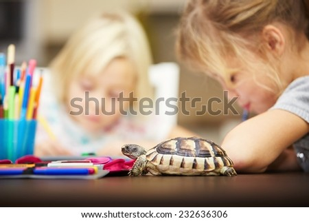 Girls and turtle. Siblings are doing his homework for elementary school. - stock photo