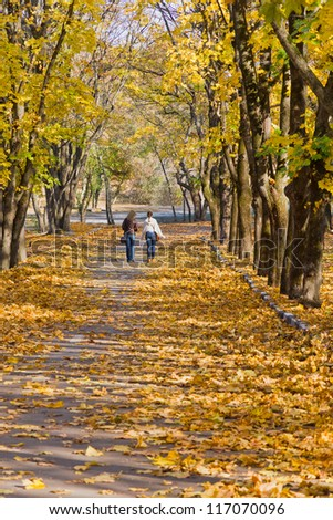 Girls are walking on a path in autumn park. - stock photo