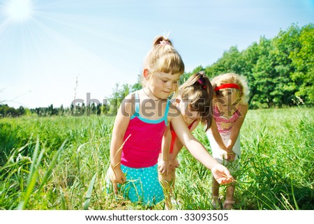 Girls looking for an insect in grass