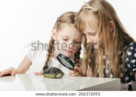 girls studying turtle through magnifying glass