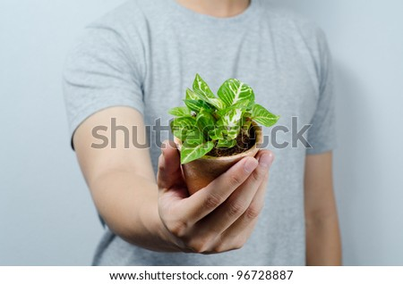 Give a green plant in hand - stock photo