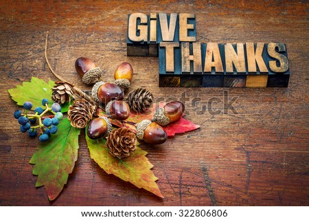 give thanks - Thanksgiving concept - text in letterpress wood type printing blocks with cone, acorn, leaf and berries fall decoration - stock photo