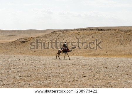 GIZA, EGYPT - NOV 23, 2014: Unidentified Egyptian man rides a camel in Giza Necropolis, Egypt. UNESCO World Heritage - stock photo