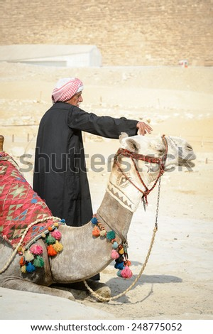 GIZA, EGYPT - NOV 23, 2014: Unidentified Egyptian man with camel at Giza Necropolis, Egypt. UNESCO World Heritage - stock photo