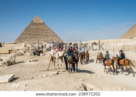 GIZA, EGYPT - NOV 23, 2014: Unidentified Egyptian people ride camels and horses in  Giza Necropolis, Egypt. UNESCO World Heritage - stock photo