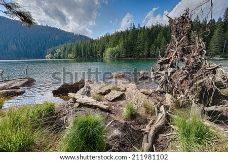 Glacial Black Lake surrounded by the forest in South Bohemia - stock photo