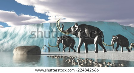 Glacier Mammoths - A herd of Woolly Mammoths encounter a huge glacier covering the Arctic territory. - stock photo