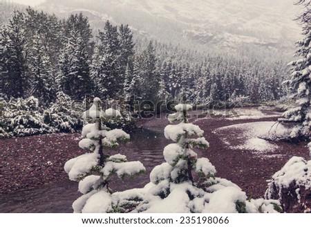 Glacier National Park, Montana. Winter. - stock photo