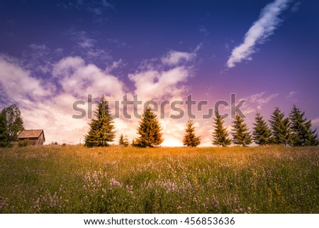 Glamorous sunset over meadow and trees - Image with an antique wooden barn and trees perfectly lined up on the horizon, a flowery meadow and dotted cloudscape overwhelmed by an amazing sunset. - stock photo