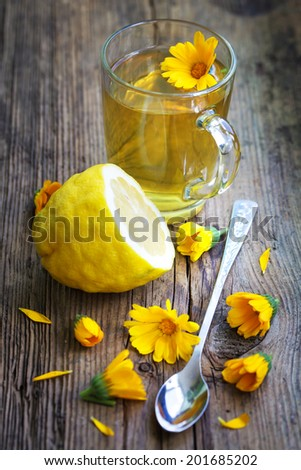 glass cup of herbal  tea with lemon and summer flower - stock photo