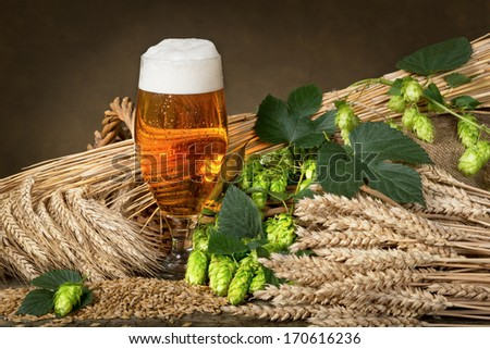 glass of beer and raw material for beer production - stock photo
