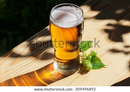 glass of beer with hops on the wooden sun, garden, street, delicious, beautiful, light gold, tasty, beautiful - stock photo