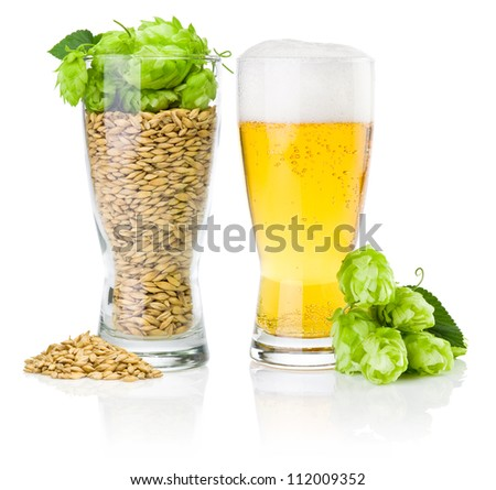Glass of fresh beer and cup full of barley and hops isolated on white background - stock photo