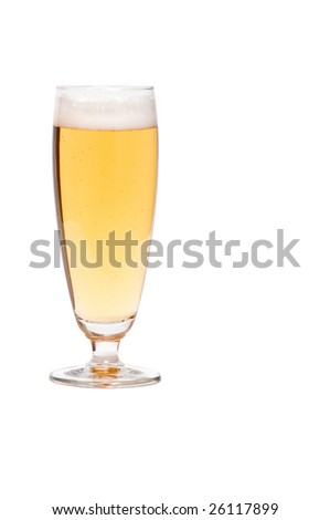 Glass of lager beer on white background. Copy space on the right.