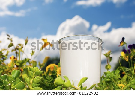 glass of milk with grass, flowers and sky - stock photo