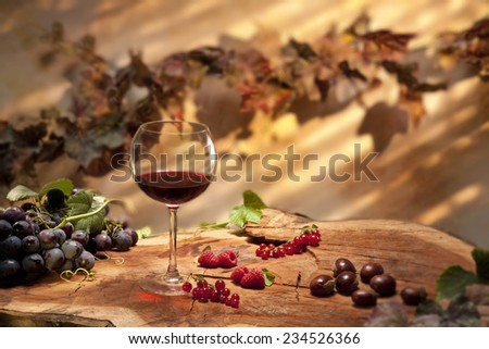 Glass of red wine in autumn setting