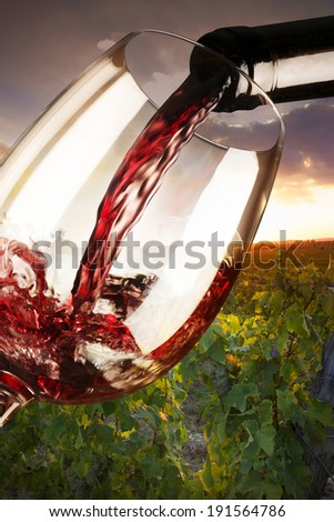 glass of red wine in the vineyard - stock photo