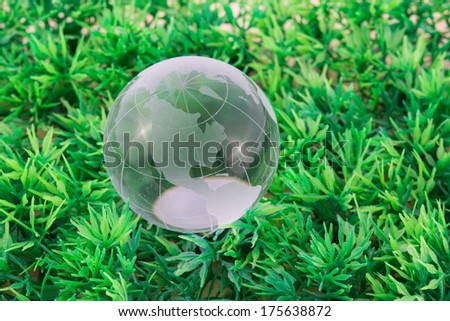 glass the word on green grass background - stock photo