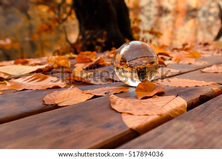 Glass transparent ball with yellow autumn leaves background and wooden