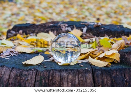 Glass transparent ball with yellow autumn leaves background and wooden surface. Soft focus. With empty space for text. - stock photo