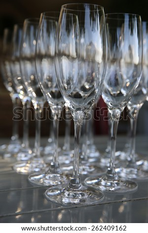 Glasses for Sparkling Wine - stock photo