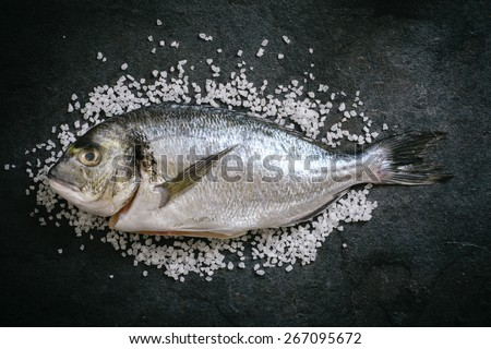 Glithead fishe with salt on black background  - stock photo