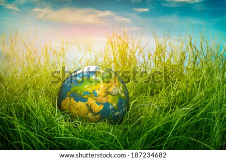 Globe lies on green grass. Concept - Earth Day.  - stock photo