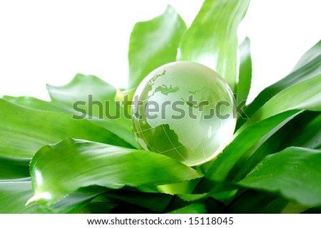 Globe on plant representing environmental protection concept Europe version - stock photo