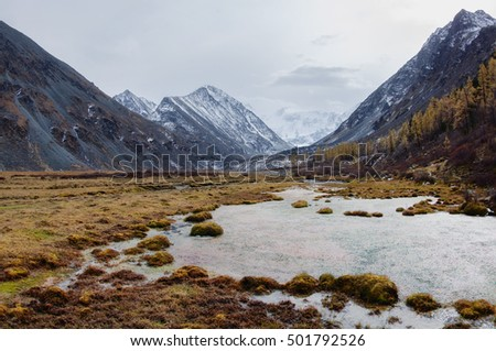 Gloomy autumn dark mountain valley with a swamp and shores with yellow dry grass on the background of snow peaks and ice glacier cloudy sky Akkem Belukha Altai mountains Siberia Russia