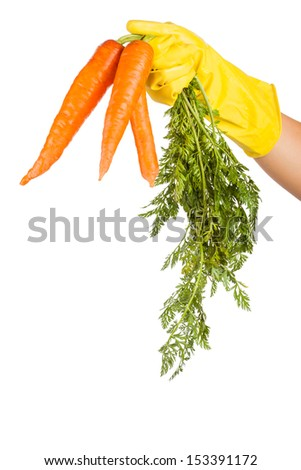 gloved hand holding a carrot isolated on white background - stock photo