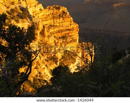 Glowing cliff in the Grand Canyon at sunrise