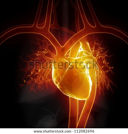Glowing heart with internal organs     **** Also as footage available in my portfolio - stock photo