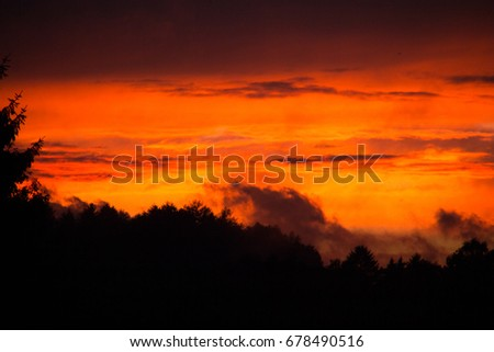 Glowing red evening sky at sunset with dramatic cloud scenery that looks like a bush fire with silhouettes of bushes and trees in the foreground