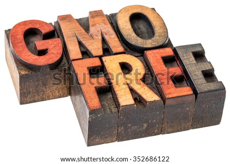 GMO (genetically modified organism) free banner - isolated text in vintage letterpress wood type stained by inks - stock photo
