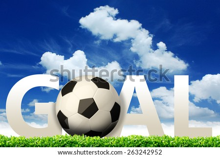 Goal. A soccer ball in a net. - stock photo