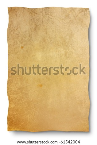 goat skin parchment - blank sheet for map and old banner - empty leather texture background for antique sign, edict, manuscript - stock photo