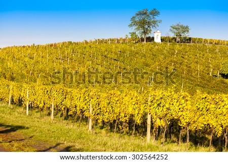 God's torture with autumnal vineyard, Modre Hory, Southern Moravia, Czech Republic - stock photo