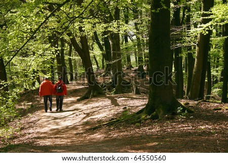 going for a walk - stock photo