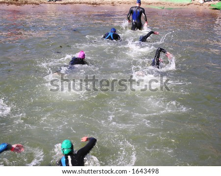 Going on Land - stock photo